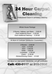 Professional Carpet & Upholstery Cleaning for