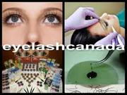 Extensive Online Eyelash Extensions Training Program