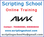 AWK Online Training Online Training Institute in Hyderabad India