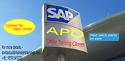 SAP APO Online Training Classes